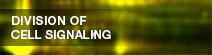 細胞情報学分野 -DIVISION OF CELL SIGNALING-