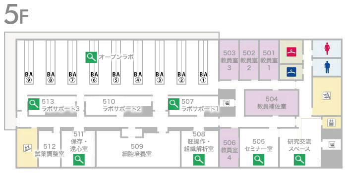 藤井節郎記念医科学センター5階